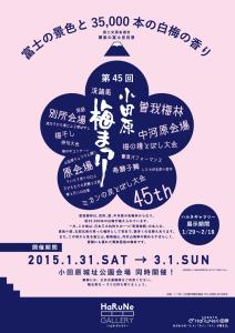 B3_umematsuri_info