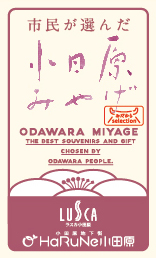 meishi_odawaramiyage
